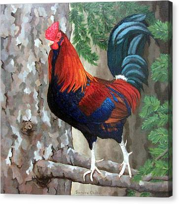 Canvas Print - Roscoe The Rooster by Sandra Chase