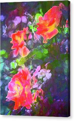 Rose 192 Canvas Print by Pamela Cooper