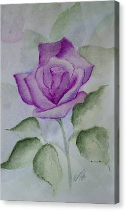 Rose 3 Canvas Print by Nancy Edwards