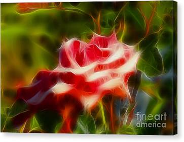 Rose 6168-fractal Canvas Print by Gary Gingrich Galleries