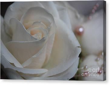 Rose And Pearls Canvas Print by Nancy TeWinkel Lauren