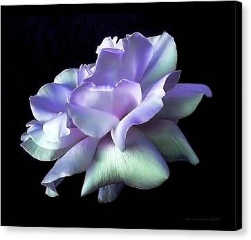 Canvas Print featuring the photograph Rose Awakening Floral by Jennie Marie Schell