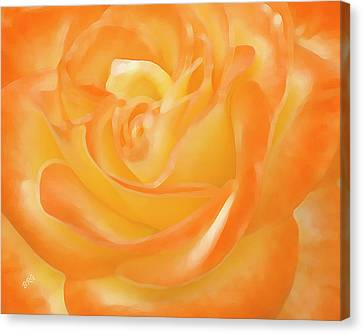 Canvas Print featuring the photograph Rose by Ben and Raisa Gertsberg