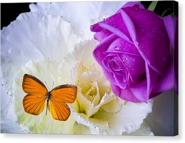 Rose Butterfly With Kale Canvas Print by Garry Gay