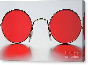Rose Colored Glasses Canvas Print by Dan Holm
