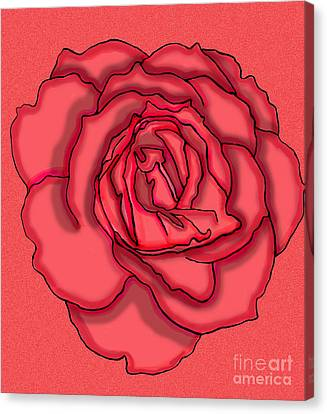 Rose Drawing Canvas Print by Christine Perry