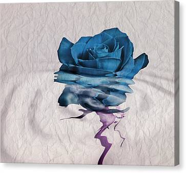 Rose En Variation - 02bt01 Canvas Print by Variance Collections