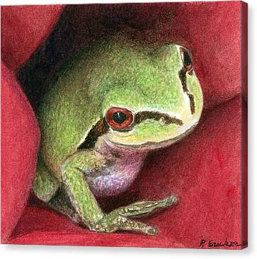 Frog Watercolor Canvas Print - Rose Frog by Pat Erickson