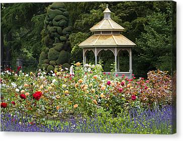 Canvas Print featuring the photograph Rose Garden Gazebo by Sonya Lang