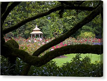 Canvas Print featuring the photograph Rose Garden Window by Sonya Lang