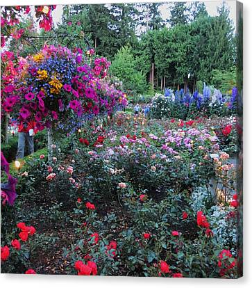 Rose Gardens 2 Canvas Print