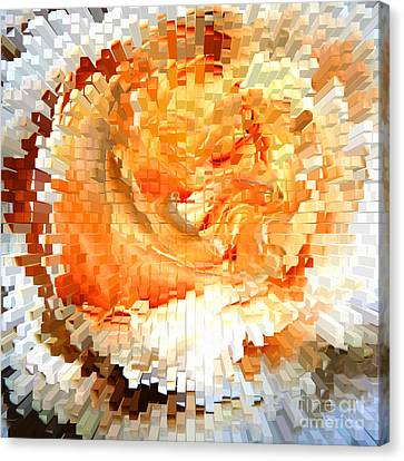 Rose In Bloom Canvas Print by Alys Caviness-Gober