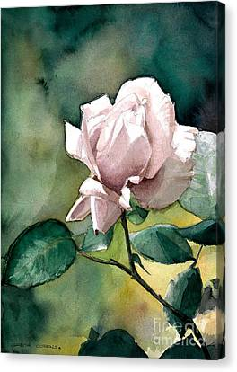 Watercolor Of A Lilac Rose  Canvas Print