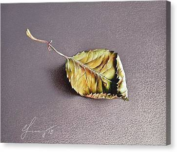 Rose Leaf Canvas Print by Elena Kolotusha