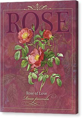 Rose Of Love Canvas Print by Tammy Apple