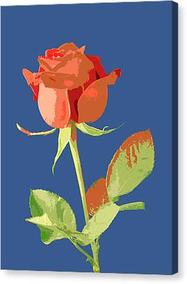 Rose On Blue Canvas Print by Mauro Celotti