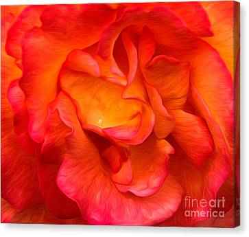 Rose Red Orange Yellow Canvas Print
