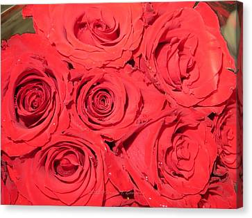 Rose Swirls Canvas Print by Sonali Gangane