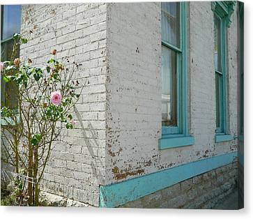 Canvas Print featuring the photograph Rose White Blue House by Kathy Barney