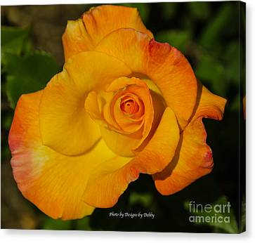 Canvas Print featuring the photograph Rose Yellow Red by Debby Pueschel