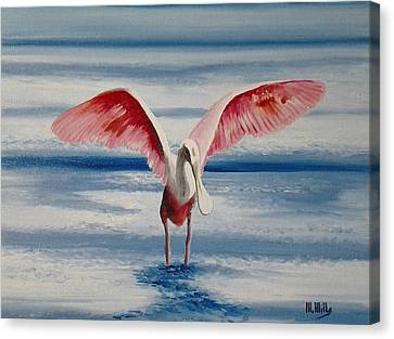 Roseate Spoonbill IIi Canvas Print