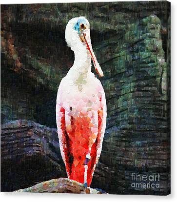 Roseate Spoonbill Painting Canvas Print by Magomed Magomedagaev