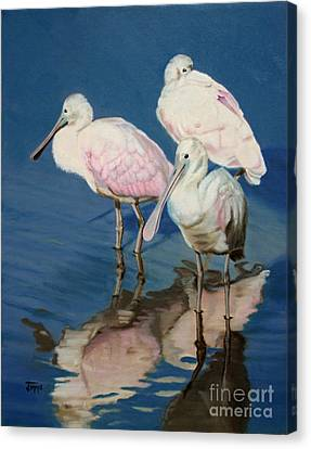 Canvas Print featuring the painting Roseate Spoonbill Trio by Jimmie Bartlett
