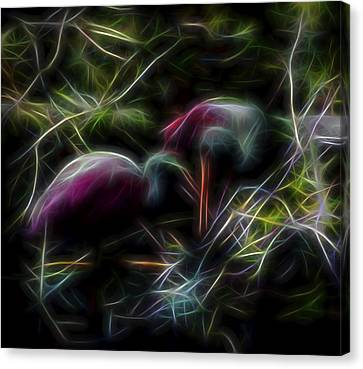 Canvas Print featuring the digital art Roseate Spoonbills 2 by William Horden