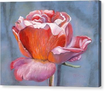 Rosefloria Canvas Print by Julie Maas