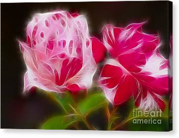 Roses 6221-fractal Canvas Print by Gary Gingrich Galleries