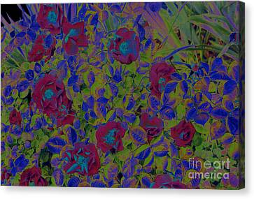Canvas Print featuring the photograph Roses By Jrr by First Star Art