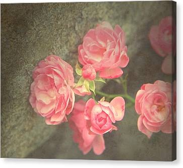 Canvas Print featuring the photograph Roses On Granite by Brooke T Ryan