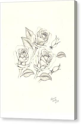 Canvas Print featuring the drawing Roses by Patricia Hiltz