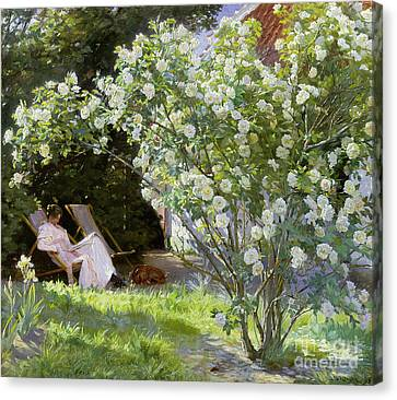 Roses Canvas Print by Peder Severin Kroyer