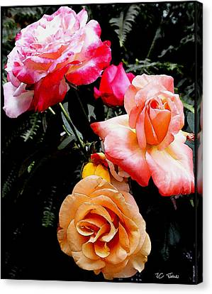 Canvas Print featuring the photograph Roses Roses Roses by James C Thomas