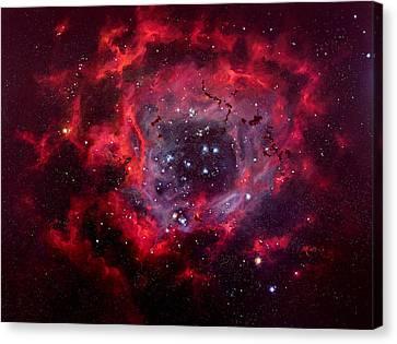 Rosetta Nebula Canvas Print by Marie Green