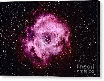 Monoceros Canvas Print - Rosette Nebula In Monoceros by John Chumack