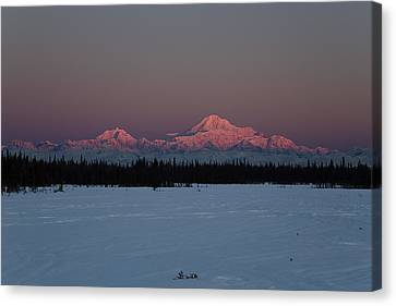 Rosewood Canvas Print by Ed Boudreau