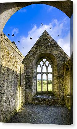 Winter Light Canvas Print - Ross Errilly Friary - Irish Monastic Ruins by Mark E Tisdale
