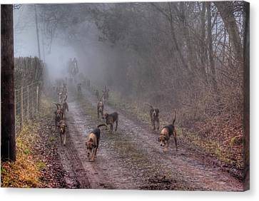 Ross Harriers Hunt Canvas Print by Steve Lindon