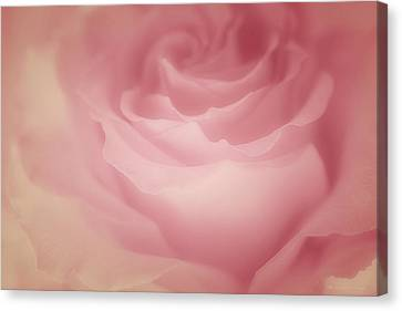 Masterful Canvas Print - Rosy Loveliness by The Art Of Marilyn Ridoutt-Greene