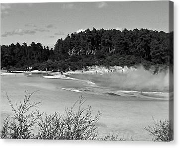 Rotorua New Zealand 3 Bw Canvas Print