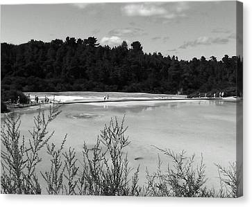 Rotorua New Zealand 4 Bw Canvas Print