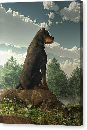 Rottweiler  Canvas Print by Daniel Eskridge
