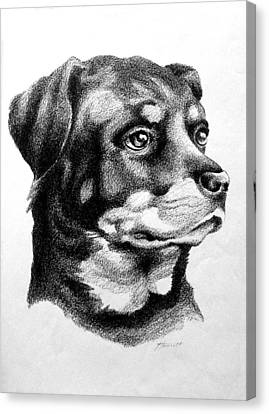 Rottweiler Devotion Canvas Print by Patricia Howitt