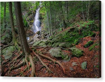 Western Ma Canvas Print - Rough Terrain by Bill Wakeley