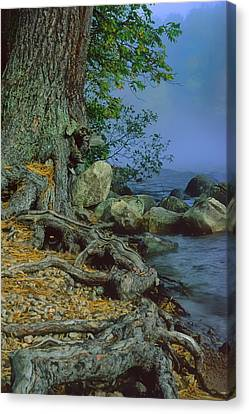 Canvas Print featuring the photograph Route Of The Voyageurs by Gary Hall