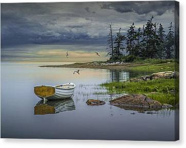 Row Boat By Mount Desert Island Canvas Print by Randall Nyhof