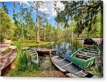 Row Boats In Cypress Tree Swamp I Canvas Print by Dan Carmichael