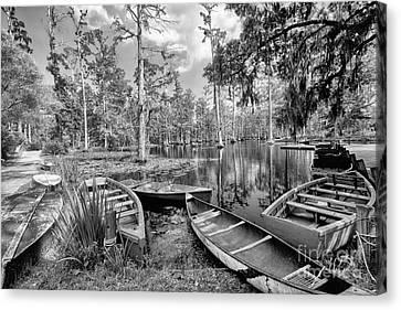 Row Boats In Cypress Tree Swamp IIi Canvas Print by Dan Carmichael